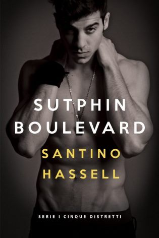 Sutphin-Boulevard-di-Santino-Hassell-Five-Boroughs-Story-I-cinque-distretti-683x1024